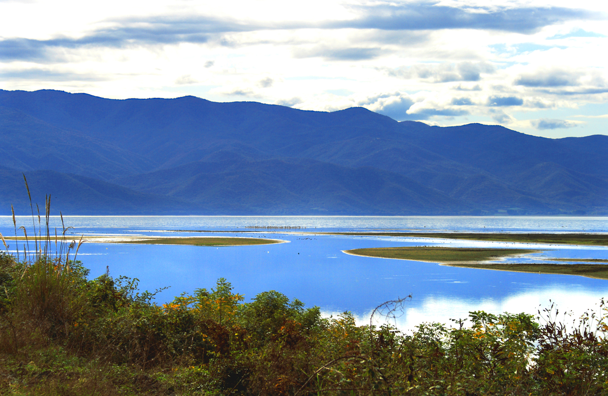 Lake Kerkini by Dimiter Georgiev